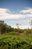 Rural Australia Stock Photography