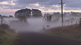 Rural Australia Country Road Pan, Fog, Mist. Slow pan of Rural Australia country road in the morning mist stock footage