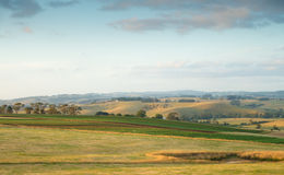 Rural Australia farmland. Rural evening sunset in countryside in South Gippsland, Australia Royalty Free Stock Images