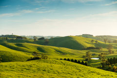 Rural Australia landscape. Beautiful rural landscape on the outskirts of Korumburra in Victoria, Australia Stock Photos