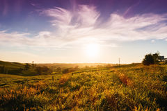 Rural Australia landscape Royalty Free Stock Photography