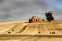 Rural  Australia Stock Images