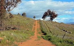 Rural Australian Landscape. Rural farm road against cloudy blue sky Stock Photography