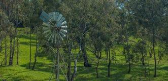 rural australii Fotografia Royalty Free