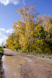 Rural autumn bad gravel road after rain Royalty Free Stock Image
