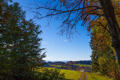 Rural Autumn Distant Alps. Autumn forest view from northern Switzerland looking south towards the distant alps Royalty Free Stock Image