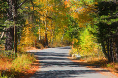 Rural autumn drive Stock Photography