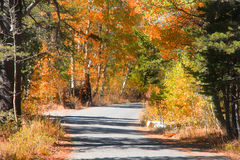 Rural autumn drive Stock Images