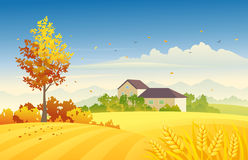 Rural autumn. Illustration of an autumn farm scene with wheat fields Royalty Free Stock Photography