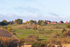 Rural autumn landscape. In the countryside Stock Images