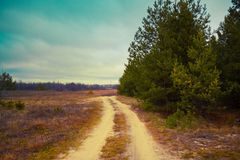 Rural autumn landscape. With dirt road Royalty Free Stock Photography