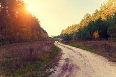 Rural autumn landscape. Dirt road Stock Photography