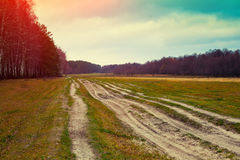 Rural autumn landscape. Dirt road on a glade Stock Photography