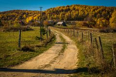 Rural autumn landscape with a dirt road. In the village Royalty Free Stock Photography