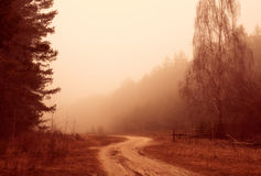 Rural autumn landscape. Misty morning, winding dirt road among forest Stock Image