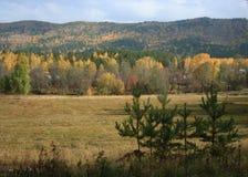 Rural autumn landscape. Mountain village Royalty Free Stock Image