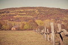 Rural autumn landscape in the mountains . The fence passing into distance tiny house Royalty Free Stock Photography