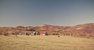 Rural autumn landscape in the mountains . Small houses and horses Stock Photography