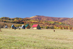 Rural autumn landscape in the mountains . Small houses and horses Stock Image