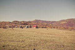 Rural autumn landscape in the mountains . Small houses and horses Royalty Free Stock Photography