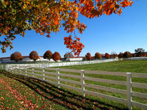 Rural autumn countryside Royalty Free Stock Photography