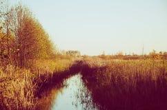 Rural autumn landscape Stock Photography