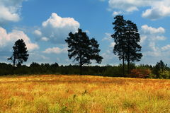 Rural autumn landscapes. Rural landscapes in summer season Stock Photos