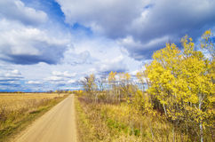 Rural autumn road Stock Image