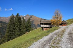 Rural autumn scene near Gstaad Royalty Free Stock Photography
