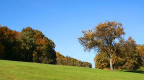 Rural autumn scenery Royalty Free Stock Image