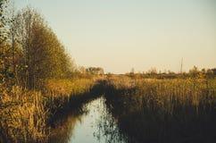Rural autumn landscape Stock Images