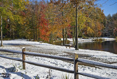 Rural Autumn Winter Pond Royalty Free Stock Images
