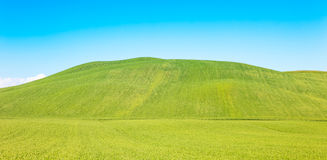 Rural background, rolling hill and green fields landscape, Tuscany, Italy. Stock Photos