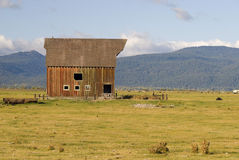 Rural Barn. An old rural barn in a field on a farm. Looks abandoned royalty free stock images
