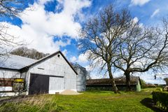 Rural barnyard with a silo. And green grass in the spring royalty free stock photos