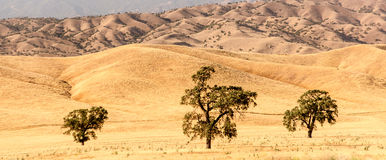 Rural California Stock Photography