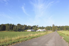 Rural Canadian country road Stock Images