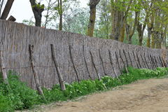 Rural cane fence Stock Photo