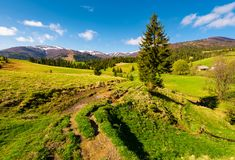 Rural are in Carpathian mountains in springtime. Lovely scenery with rural fields between forest and village outskirts Royalty Free Stock Images