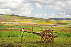 Rural cart in Burma. Rural cart on a field of yellow flowers, hills in the background, Burma (Myanmar), Shan State stock photography