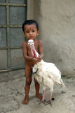 Rural Child in India. October 18,2011 Sonakhali,Sundarban,West Bengal,India,Asia- A child holding a pet bird in a remote village of West Bengal-India Royalty Free Stock Images