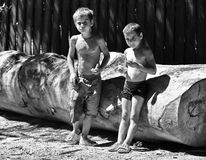 Rural children Stock Image
