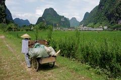 Rural Chinese farmer Stock Photos
