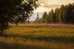 Rural church. Rural summer landscape with field of flowers in foreground and church in forest Stock Photo