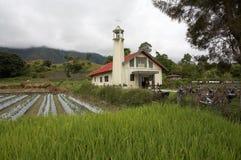 Rural Church. Church in a rice paddy at Lake Toba, Sumatra, Indonesia Stock Image