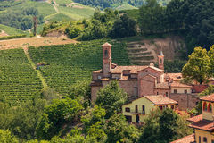 Rural church and vienyards in Italy. Small parish church among green vineyards in Piedmont, Northern Italy Stock Image