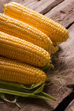 Rural corn. Corn cobs on a wooden background. Rural corn Stock Photography