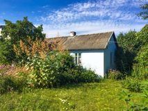 Rural cottage house in Poland. Rural cottage house surrounded by grass, plants and flowers in European countryside Royalty Free Stock Image
