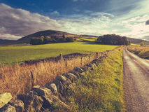 Rural Country Lane Royalty Free Stock Photos