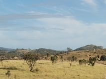Rural Country Queensland Australia Royalty Free Stock Images